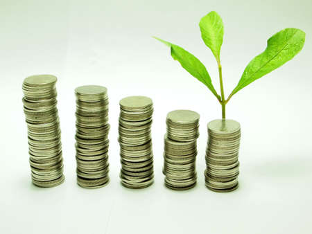 Money concept and baby plant photo