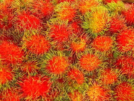 Rambutan - Tropical Fruits Rambutan