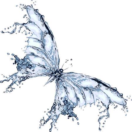 mariposa azul: Salpicaduras de agua de la mariposa
