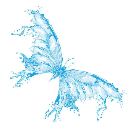 Water splash butterfly Vector