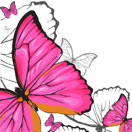 Pink buterflies background Vector