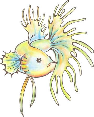 siamese: Siamesische Kampffische