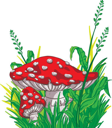 Cartoon style amanita mushrooms and grass Vector