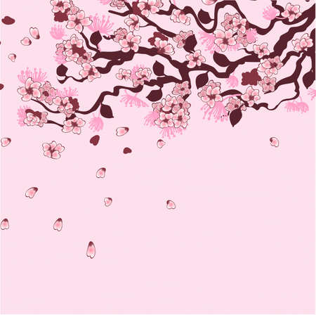 Sakura branch background Vector