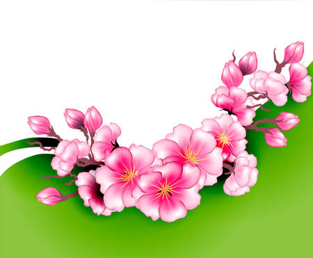 Sakura branch flowers design template Vector