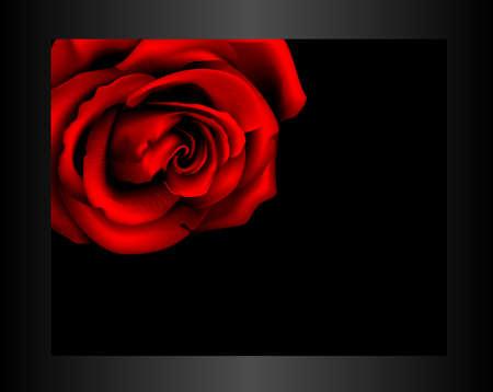 Rose in frame Stock Vector - 16209830