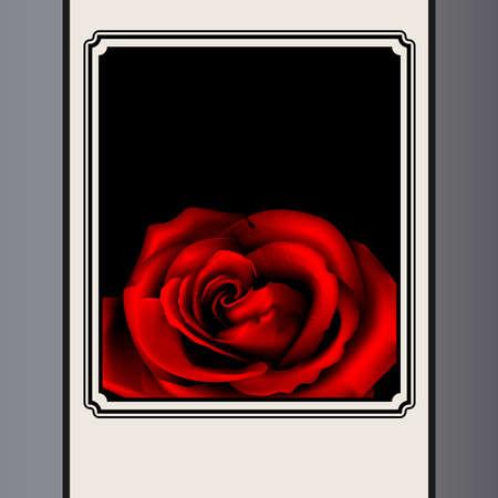 Rose in frame Stock Vector - 16209835