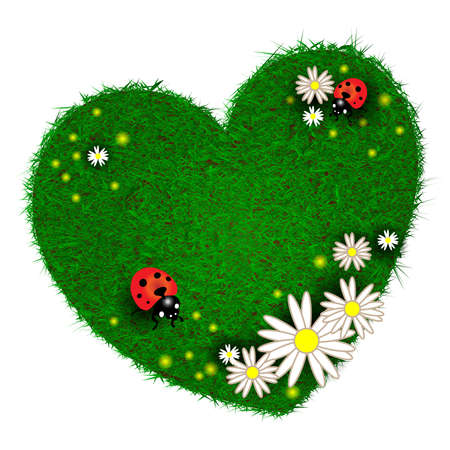 Heart and flowers on the grass photo