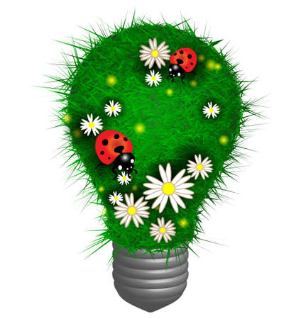 Lamp made of grass with flowers and ladybugs Vector