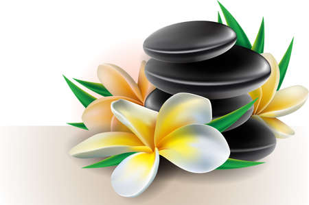 Spa concept zen stones with frangipani flowers Vector