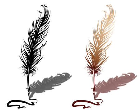 feather pen: Quill with drawn line Illustration