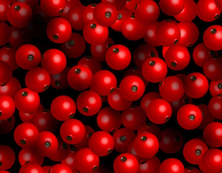 red currant: Redcurrant vector background