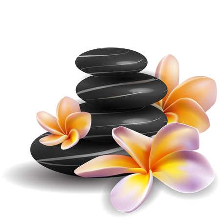 relax massage: Spa concept zen stones and frangipani flowers Illustration