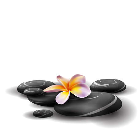 bamboo mat: Spa concept zen stones and frangipani flowers Illustration