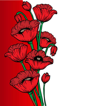 poppy field: Poppy flower design template