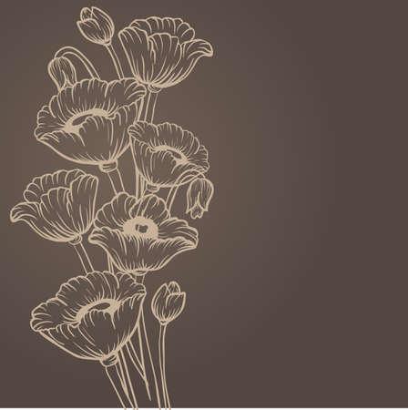 wildflowers: Poppy flower