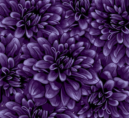 Dahlia pattern Stock Photo - 17695421