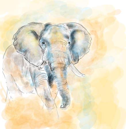 Elephant aquarelle painting imitation