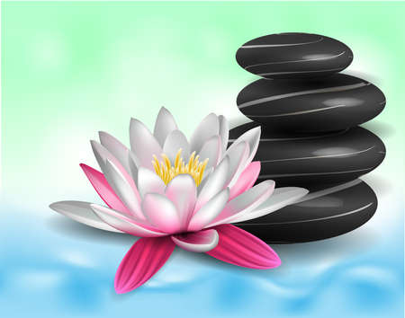meditation stones: Water lily and zen stones