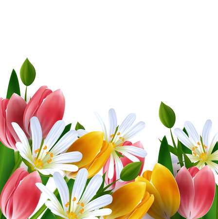 Floral background  Daisies and tulips