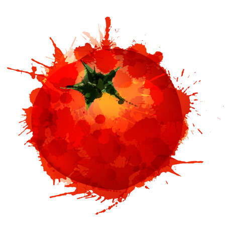 jitomates: Tomate de salpicaduras de colores sobre fondo blanco Vectores