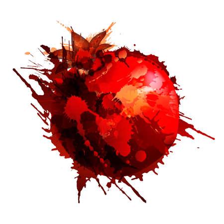 Pomegranate made of colorful splashes on white background Illustration