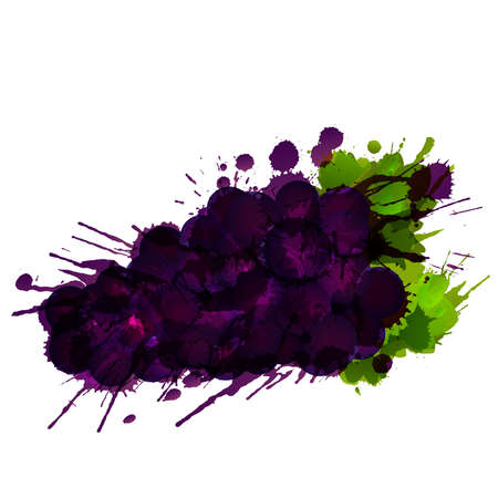 spatter: Grapes made of colorful splashes on white background