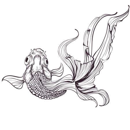 흰색 배경에 금붕어의 스케치
