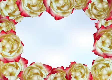 rose garden: Frame made of tea roses