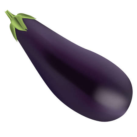 Eggplant isolated Vector