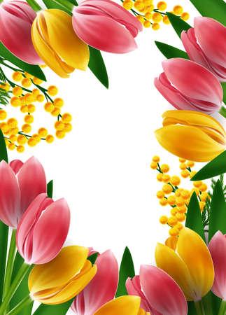 Plantilla de diseño Mimosas y tulipanes marco Ilustración de vector