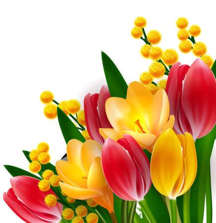 Tulpen und Mimosen-Design-Vorlage Standard-Bild - 25042082