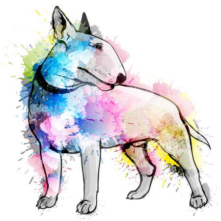 watercolours: Bull terrier grunge