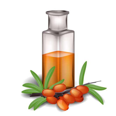 argousier: L'argousier branche avec des baies et une bouteille d'huile Illustration