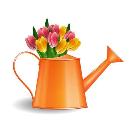 Arrosoir avec un bouquet de tulipes isolé sur fond blanc Banque d'images - 27447122