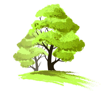 Two trees drawing isolated Illustration