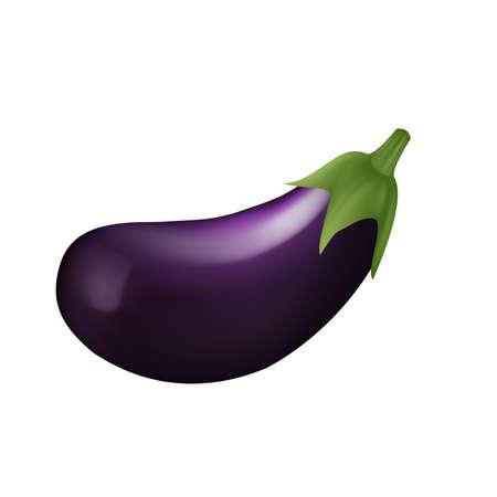 Eggplant Vettoriali