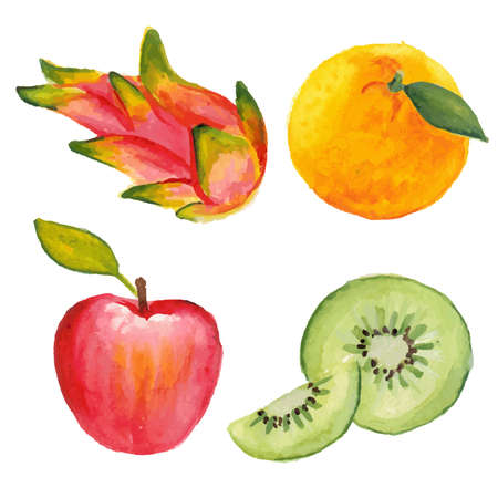 kiwi fruta: Apple, kiwi, naranja y fruta de dragón. Dibujado a mano en la técnica de la acuarela