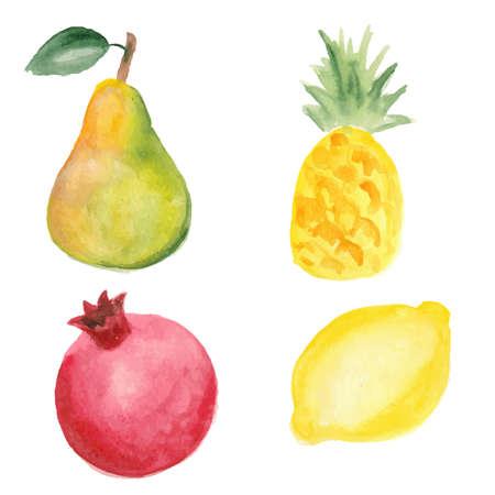 watercolor technique: Pear, pinapple, pomegranate and lemon. Hand drawn in watercolor technique