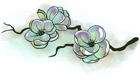 Jasmine flowers on a branch Vector