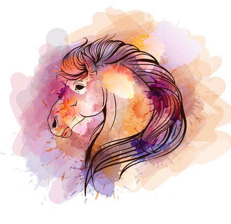 Watercolor horse head Vector