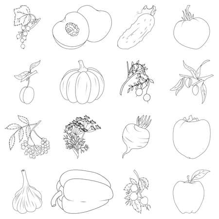 Coloring book. Set of fruits and vegetables Vector