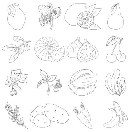 Coloring book. Set of fruits and vegetables