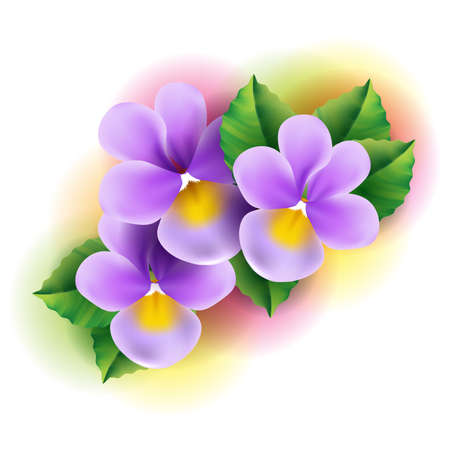 Violt flowers