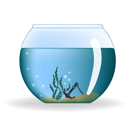 empty the bowl: Round aquarium with water and decorations