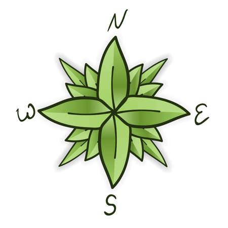 Compass rose made of green leaves. Eco travel concept