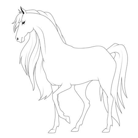 Coloring Book: Horse Royalty Free Cliparts, Vectors, And Stock ...