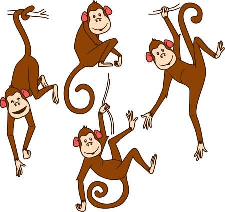 mono caricatura: Conjunto de monos en diferentes poses