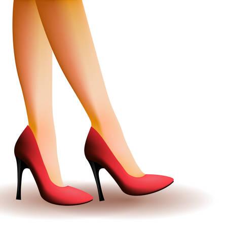 ladies shoes: Woman legs wearing high heels Illustration
