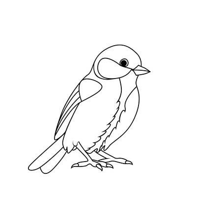 Coloring book: Tit Stock Vector - 47538038